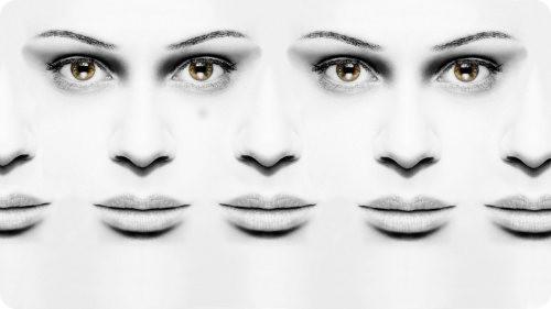 Clonación de adultos: cada vez más cerca