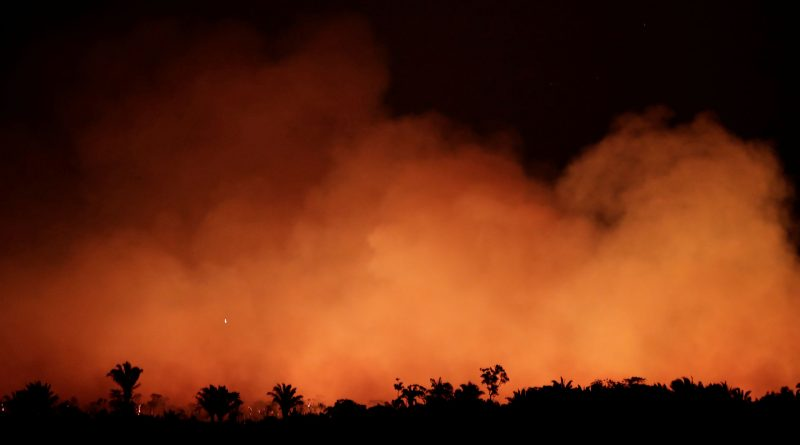 El fuego en el Amazonas brasileño