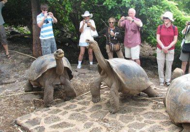 Galápagos crisis y realidad provocada por el COVID-19
